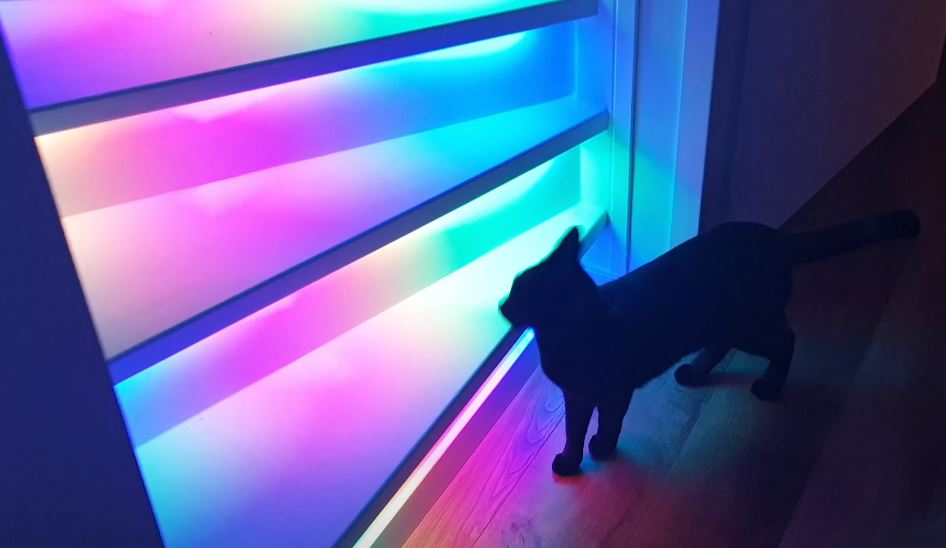 RGB-LED-Staircase-cat